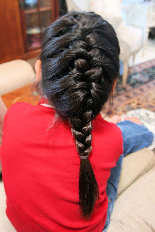Blog french braid IMG_3138