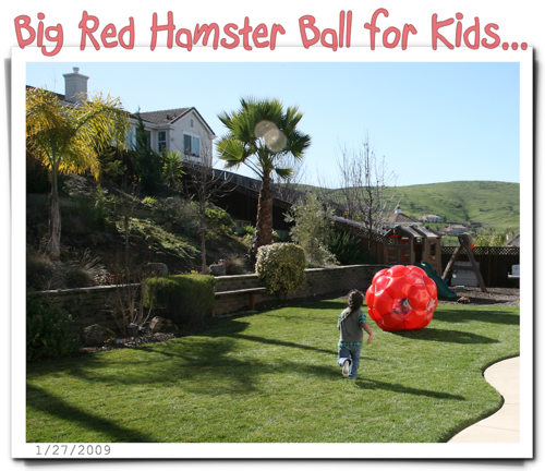 Big red hamster ball-blog