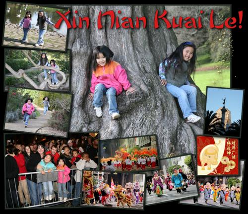 Xin Nian Kuai Le 2009-blog