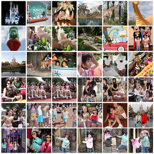 Disney flickr collage