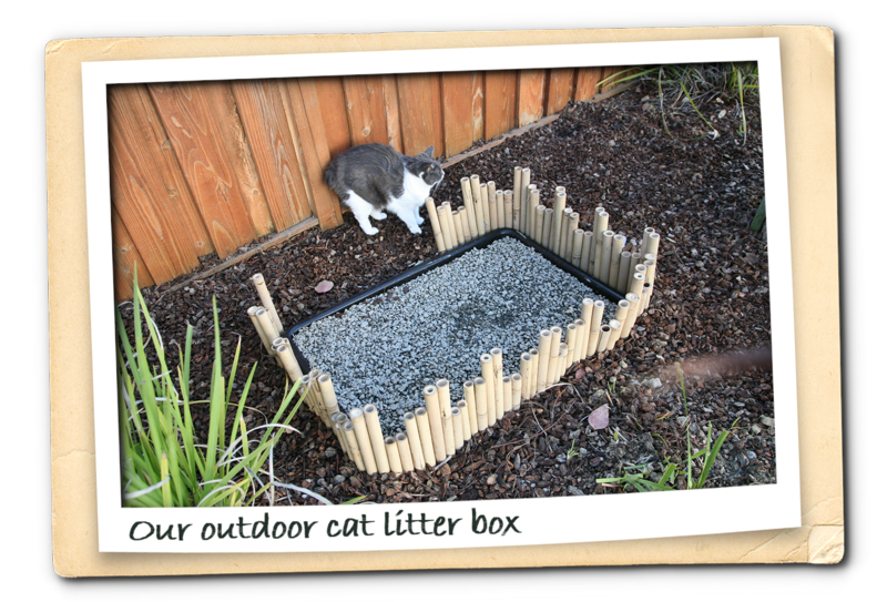 Newest outdoor cat litter box