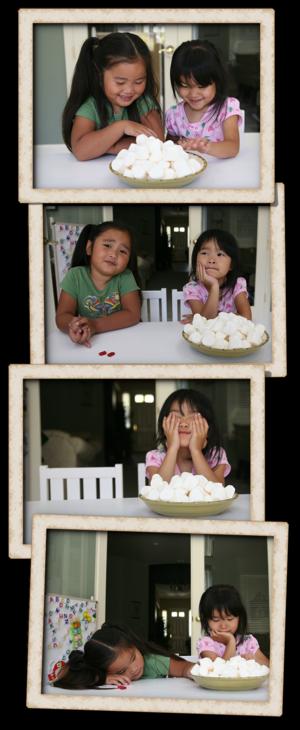 Bing Marshmallow Experiment-000001