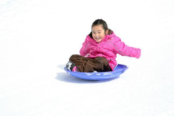 20100214gwen saucer sled0734