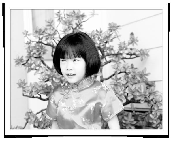 Chinese dress 1625a