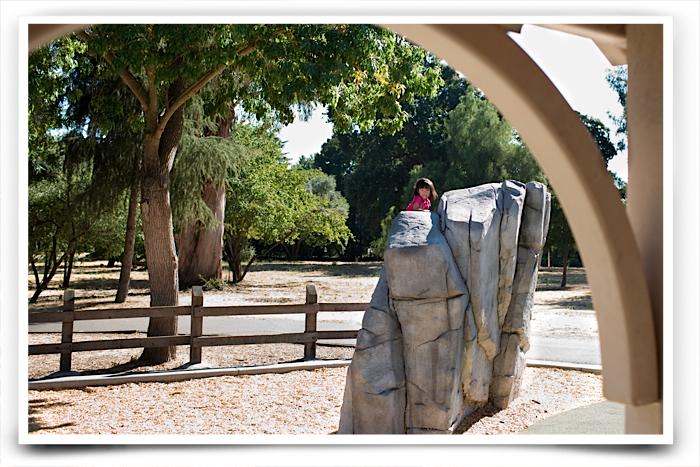 Edenvale park-20