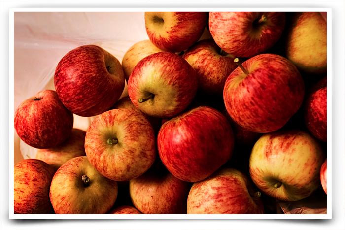 20100828IMG_1184pismo beach apples