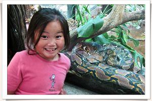 San diego zoo-1491