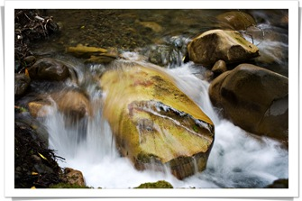 blog camping_uvas_canyon_creek_IMG_7400