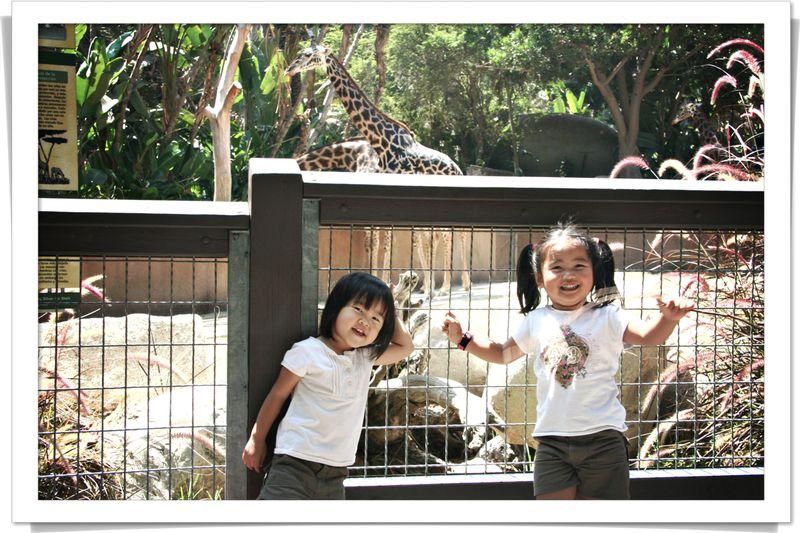 Blog 20070824 k Giraffe behind us