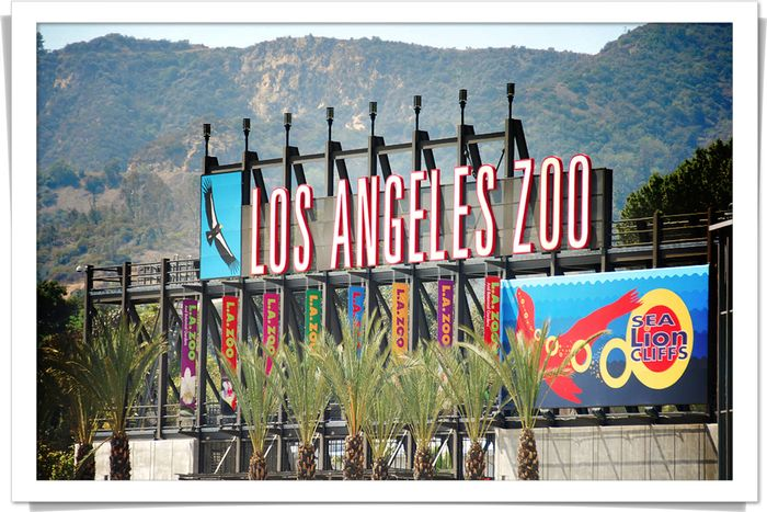 Blog 20070824 LA Zoo entrance