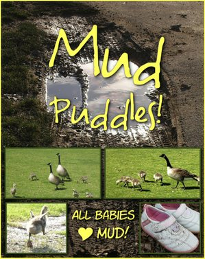 Mud_puddles_b