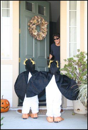 20011028_penguins_078_sm