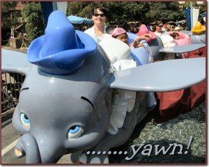 Dumbo_sm
