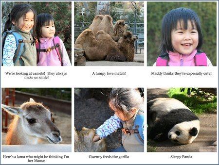 Blog_zoo_1